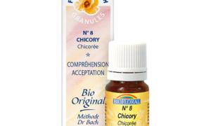 Chicory, Chicorée en granules Bio sans alcool