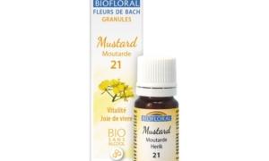 Mustard, Moutarde en granules Bio sans alcool