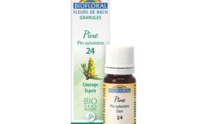 Pine, Pin sylvestre en granules Bio sans alcool