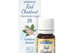 Red Chestnut, Marronnier rouge en granules Bio sans alcool
