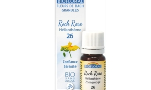 Rock Rose, Hélianthème en granules Bio sans alcool