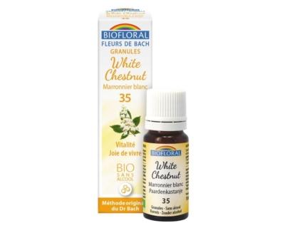 White Chestnut, Marronnier blanc en granules Bio sans alcool