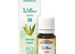 Willow, Saule en granules Bio sans alcool
